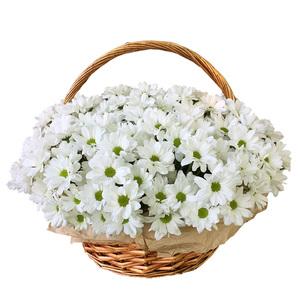 Корзина хризантем