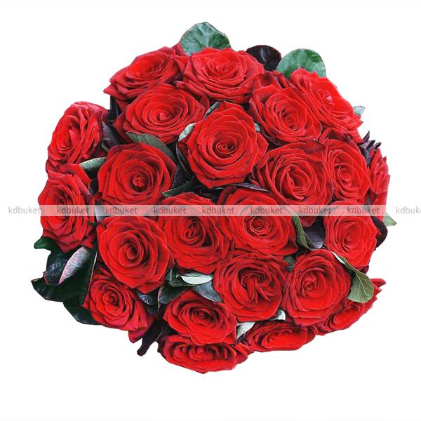 Бархатные розы купить купить живые цветы в запорожье
